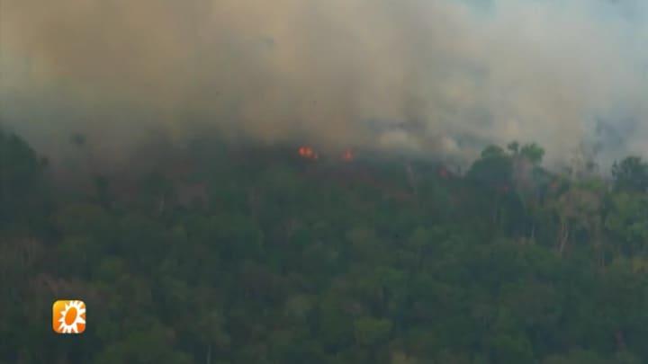 Flinke ophef over bosbranden Amazone, ook onder celebrities