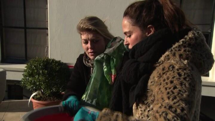 Eigen Huis Tuin Diy Italiaanse Patio Met Pauline Wingelaar