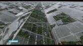 Paprikatelers wanhopig na extreme hagelbui