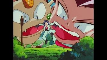 Pokémon - De Bruiloft!