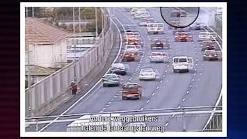 Stop! Politie Nieuw-Zeeland Afl. 11
