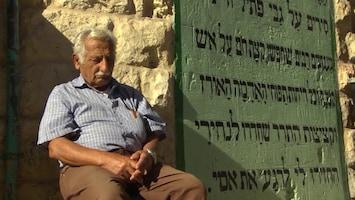 Pluijms Eetbare Wereld - Israël
