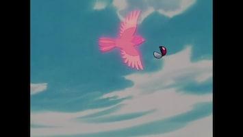 Pokémon - De Samoerai-uitdaging