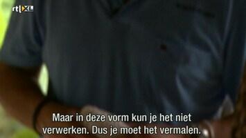 Kanjers Van Goud - Afl. 3