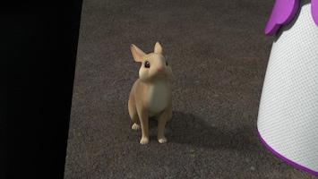Super 4 De konijnenvanger van Koningsland