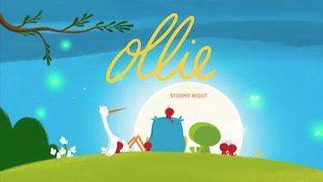 Ollie Woelige nacht