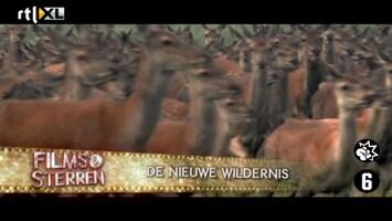 Films & Sterren De Nieuwe Wildernis