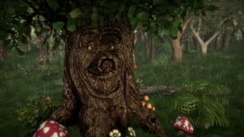 Sprookjesboom - Midwinterkabouterbal