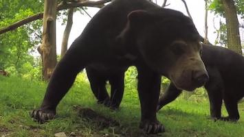 Uitgelicht - Afl. 34: Burgersâ' Zoo