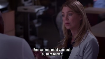 Grey's Anatomy Go it alone