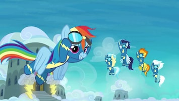 My Little Pony Solocitatie