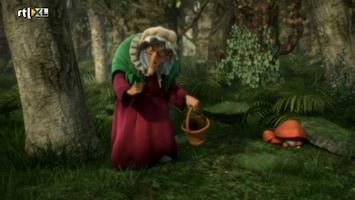Sprookjesboom Klets maar raak ezel