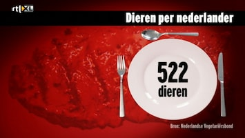 Editie NL Editie NL /196