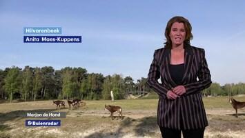 RTL Weer En Verkeer Afl. 254