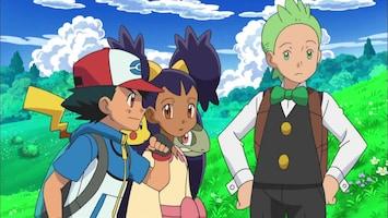 Pokémon De journalist uit een andere regio!