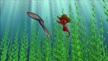 Dive Olly Dive - Verdwaalde Inktvissen
