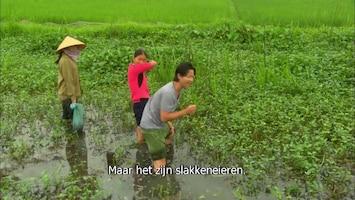 Luke Nguyen's Vietnam Afl. 3
