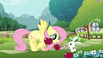 My Little Pony Afl. 8