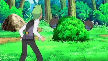 Pokémon De eenzame Deino!