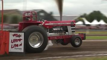 Truck & Tractor Pulling - Montfoort