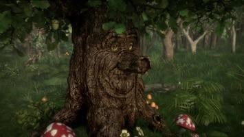 Sprookjesboom - Supertoverkracht