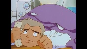 Pokémon Voor wie is Togepi?