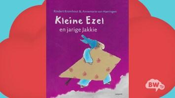 BW TV Kleine ezel jarige jakkie (Tanja Jess)