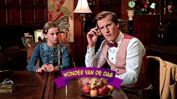 Wonderschool - De Wonderlijke Banaan