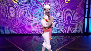 The Masked Singer Afl. 1