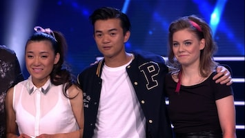 Holland's Got Talent - Afl. 8
