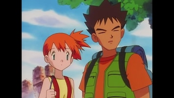 Pokémon - De Vecht-pokémon