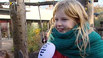 RTL Nieuws Scholen vervangen speelplein door groen