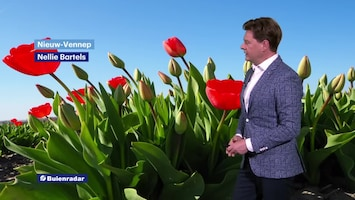 RTL Weer En Verkeer Afl. 182