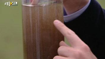 RTL Nieuws 'Korrelbacterie' zorgt voor supersnelle waterzuivering