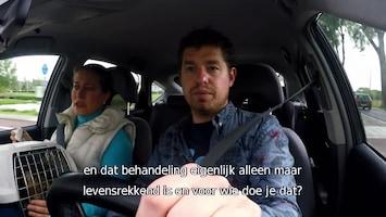 Nederland In De Auto - Afl. 1