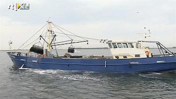RTL Nieuws Vissers blij met eerste 'perfecte' vangst mosselen