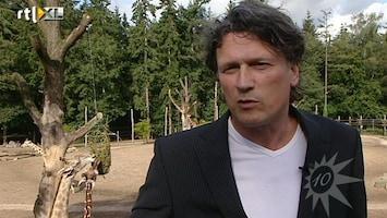 RTL Boulevard Bas Westerweel heeft nieuwe baan