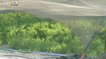 RTL Nieuws Gigantische wietplantage in Mexico