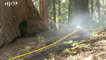RTL Nieuws Sprinklers moeten Yosemite tegen vuur beschermen