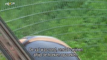 Helden Van 7: Billy The Exterminator - Helden Van 7: Billy The Exterminator Aflevering 15