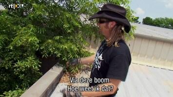 Helden Van 7: Billy The Exterminator - Helden Van 7: Billy The Exterminator Aflevering 13