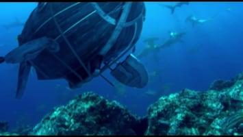 Piet Piraat Wonderwaterwereld - Krab