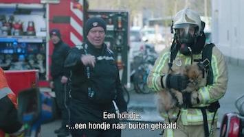 Helden Van Hier: Door Het Vuur Seizoen 4A