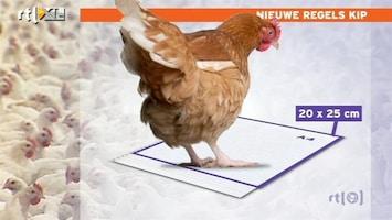 RTL Nieuws Einde aan de plofkip?