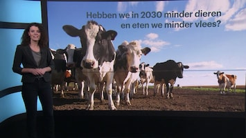 Volgens dit vleesbedrijf gaan we minder vlees eten