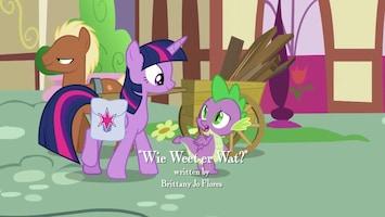 My Little Pony Wie weet er wat?