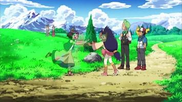 Pokémon Thuiskomen in het dorp!