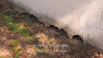 Verbouw Ons Huis Tot Droomhuis - Afl. 17
