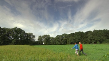 Pluijms Eetbare Wereld Belgisch-Limburg