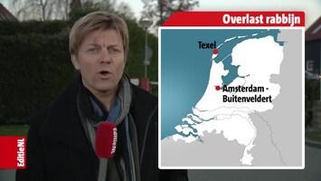 Editie NL Afl. 47
